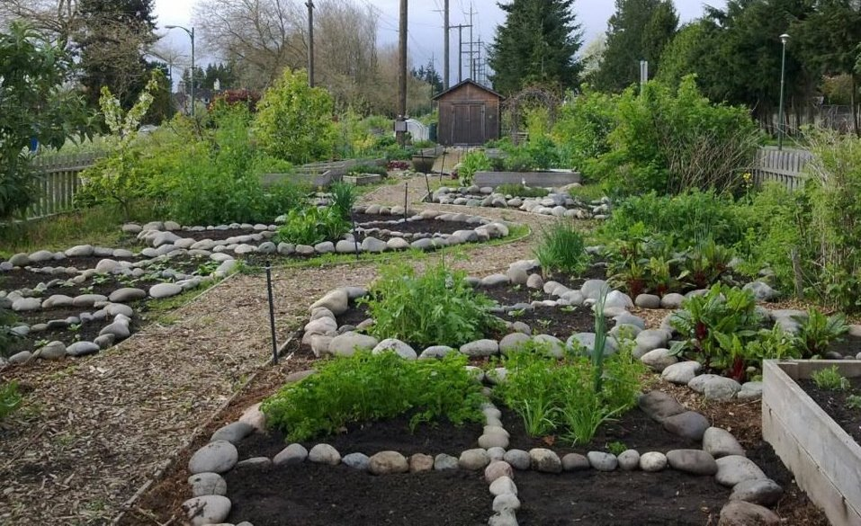Passport to permaculture the world in a garden for Small permaculture garden designs